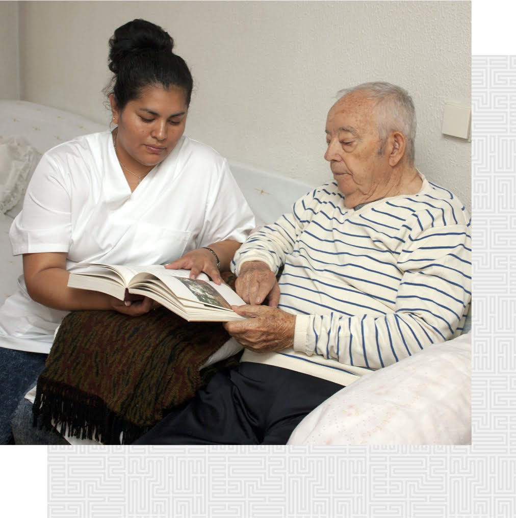 What are common causes of nursing home abuse and neglect?